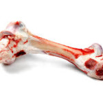 No Bones About it- Bones are unsafe for your dog